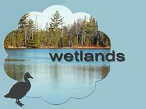 Beautiful Wetlands that have been preserved for Wildlife royalty free stock photo