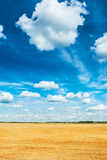 Beautiful wheat field and cloudy sky view from height Stock Images