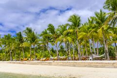 Beautiful paradise beach in Bohol Royalty Free Stock Images