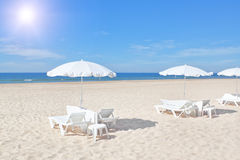 Beautiful white beach umbrellas and sunbeds on a beach. Royalty Free Stock Image
