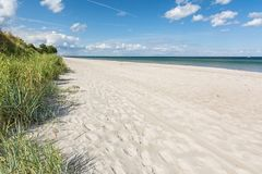 Free Beautiful White Beach With Green Seagrass At The Baltic Sea In Northern Germany Stock Photos - 165116473