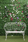 Beautiful white bench next to green hedge Stock Image