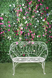 Beautiful white bench stands near to green hedge Royalty Free Stock Image