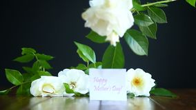 Beautiful white blooming roses. On a black background stock video footage