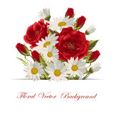 Beautiful white daisies and red roses. On white background. Floral vector illustration Stock Photos