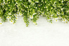 Beautiful white flower on top of mulbery paper as  Royalty Free Stock Images