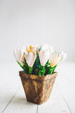 Beautiful white flowers in pot on wooden background Royalty Free Stock Photo