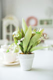 Beautiful white flowers in pot on wooden background Stock Photo