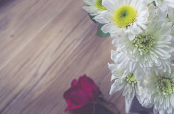 Beautiful white flowers with sun light on wooden with vintage tone Royalty Free Stock Photography