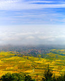 Beautiful white foggy layer over vineyards of Alsace, France Stock Image