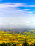 Beautiful white foggy layer over vineyards of Alsace, France Stock Photos