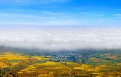 Beautiful white foggy layer over vineyards of Alsace, France Stock Images