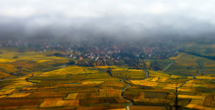 Beautiful white foggy layer over vineyards of Alsace, France Royalty Free Stock Photos