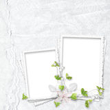 Beautiful white frame for two photos Royalty Free Stock Photography