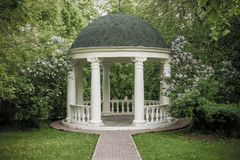 Beautiful white gazebo in a blooming spring Park.  Stock Photo