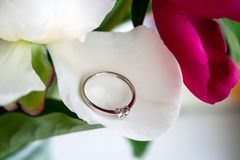 Beautiful white gold engagement ring with three small diamonds in the shape of a heart lying on the petal of white peony. Closeup view royalty free stock photos