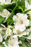 Beautiful white hibiscus flower, festive bouquet Stock Photo