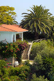 Beautiful white house in the mediterranean garden(Greece). Beautiful white house with red tile roof, small terrace and steps in the mediterranean garden(Greece Stock Photos