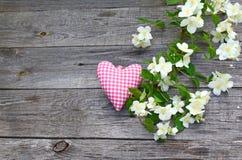 Beautiful white jasmine flowers on table Royalty Free Stock Image
