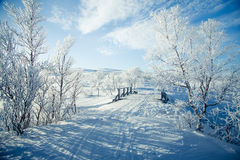 A beautiful white landscape of a snowy winter day with a small wooden foot bridge Royalty Free Stock Image