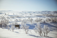 A beautiful white landscape of a snowy winter day with a small wooden foot bridge Royalty Free Stock Images