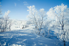 A beautiful white landscape of a snowy winter day with a small wooden foot bridge Stock Photo