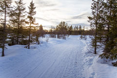 A beautiful white landscape of a snowy winter day with tracks for snowmobile or dog sled Royalty Free Stock Image