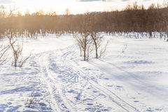 A beautiful white landscape of a snowy winter day with tracks for snowmobile or dog sled Stock Photo