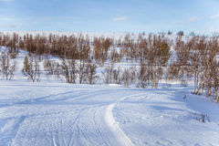 A beautiful white landscape of a snowy winter day with tracks for snowmobile or dog sled Royalty Free Stock Photography