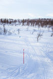 A beautiful white landscape of a snowy winter day with tracks for snowmobile or dog sled Royalty Free Stock Images