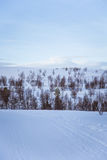 A beautiful white landscape of a snowy winter day with tracks for snowmobile or dog sled Royalty Free Stock Photo