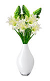 Beautiful white lily in vase isolated on white Stock Photography
