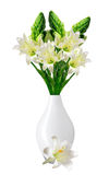 Beautiful white lily in vase isolated on white background Royalty Free Stock Photos