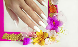 Beautiful white manicure. Beautiful white manicure on a gray background with pink flower frame royalty free stock images
