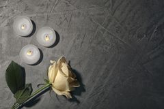 Beautiful white rose and candles on grey background,. Top view. Funeral symbol royalty free stock image