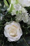 Beautiful white roses stock photo
