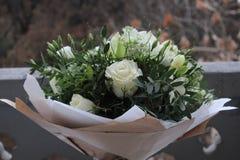 Beautiful white roses royalty free stock photo