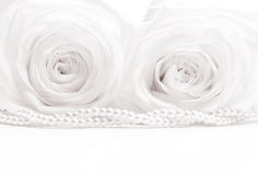 Beautiful white roses toned in sepia as wedding background. Soft Royalty Free Stock Photos