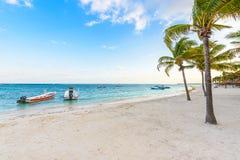 Beautiful white sand beach in Akumal, Mexico - paradise bay Beach in Quintana Roo - caribbean coast - sunset at Riviera Maya royalty free stock image