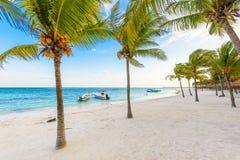 Beautiful white sand beach in Akumal, Mexico - paradise bay Beach in Quintana Roo - caribbean coast - sunset at Riviera Maya royalty free stock images