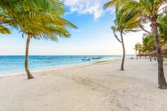 Beautiful white sand beach in Akumal, Mexico - paradise bay Beach in Quintana Roo - caribbean coast - sunset at Riviera Maya stock image