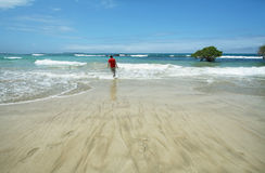 Beautiful white sand beach in the Galapagos Islands, Ecuador. Young man walking in white sand beach in Isabela island, Galapagos Islands, Ecuador stock photography