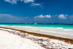 Beautiful White Sand Beach Royalty Free Stock Photo