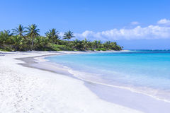 Beautiful white sand Caribbean beach Stock Photos