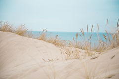 Beautiful white sand dunes at the sea beach Royalty Free Stock Images