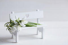 Beautiful white snowdrops on white bench on light background Royalty Free Stock Image