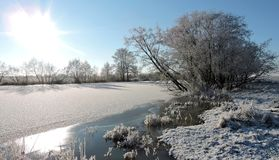 Snowy trees near river, Lithuania Stock Photography