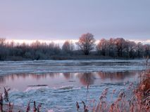 Snowy trees near river Atmata, Lithuania Royalty Free Stock Image