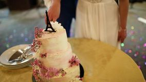 Beautiful white wedding cake with fresh flowers stock footage