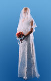 Beautiful wife's wedding on a blue background Stock Photos